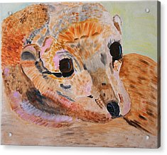 Acrylic Print featuring the painting Soulful Eyes Of A California Sealion by Meryl Goudey