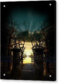 Souls Night Acrylic Print by Lisa Evans