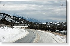 Acrylic Print featuring the photograph South On Highway 447 by Gary Rose