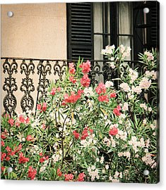 Acrylic Print featuring the photograph Southern Charm by Mary Hershberger