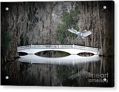 Acrylic Print featuring the photograph Southern Plantation Flying Egret by Dan Friend
