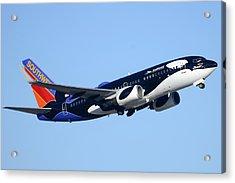 Southwest 737-7h4 N713sw Shamu Phoenix Sky Harbor Arizona December 23 2011 Acrylic Print by Brian Lockett