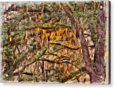 Spanish Moss And Sunset Acrylic Print by Tom Culver