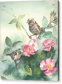 Sparrows And Dog Rose Acrylic Print