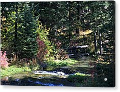 Spearfish Canyon Acrylic Print