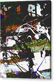 Speeding By Acrylic Print by Robert Daniels