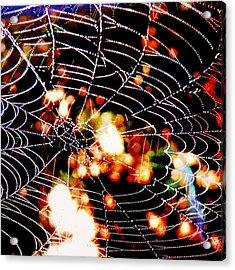 Spider Love Acrylic Print by Greta Thorsdottir