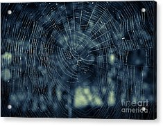 Acrylic Print featuring the photograph Spider Web by Matt Malloy