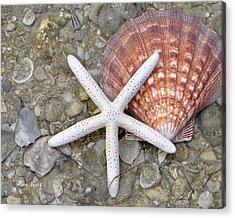 Spirit Of The Seashore  Acrylic Print