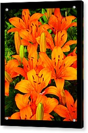Acrylic Print featuring the photograph Spiritual Bouquets At St. Francis Cathedral by Susanne Still