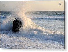 Splash 2 Acrylic Print by Catherine Lau