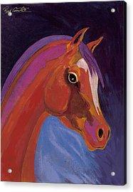 Splendor Acrylic Print by Bob Coonts