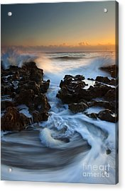 Splitting The Reef Acrylic Print by Mike  Dawson