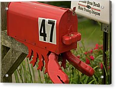 Sponge Bob's Mail Box  Acrylic Print by Paul Mangold