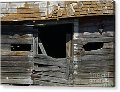 Acrylic Print featuring the photograph Spooky Face by Jim Sauchyn