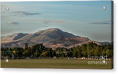 Sport Complex And The Butte Acrylic Print by Robert Bales