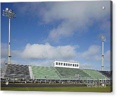 Sports Field Acrylic Print by Skip Nall