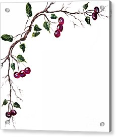 Spray Of Cherries Acrylic Print