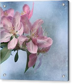 Spring Blossoms For The Cure Acrylic Print