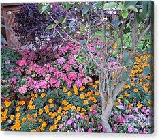 Spring Blossoms Symphony Acrylic Print