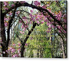 Spring Blossoms With Scripture Acrylic Print by Cindy Wright