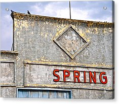 Acrylic Print featuring the photograph Spring by Brian Sereda