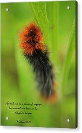 Spring Caterpillar Acrylic Print by Tyra  OBryant