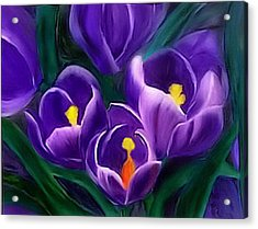 Acrylic Print featuring the painting Spring Crocus by Alethea McKee