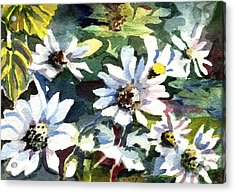Spring Daisies Acrylic Print by Mindy Newman