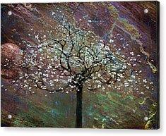 Spring Dreaming Acrylic Print by Gray  Artus