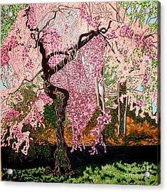 Spring Fever Acrylic Print by Brenda Marik-schmidt