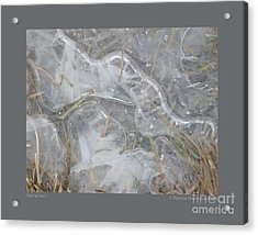 Spring Ice-i Acrylic Print by Patricia Overmoyer