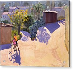 Spring In Cyprus Acrylic Print by Andrew Macara