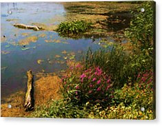 Spring Lake Millpointe Park Acrylic Print by Ritter Photography And Fine Art Images