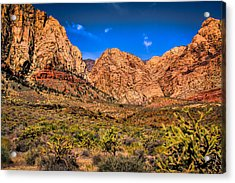 Spring Mountain Ranch In Red Rock Canyon II Acrylic Print by David Patterson