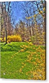 Spring Of Joy Acrylic Print by Anca Jugarean