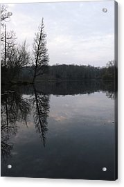 Acrylic Print featuring the photograph Spring Reflection  by Gerald Strine