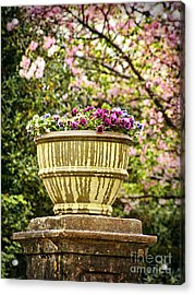 Acrylic Print featuring the photograph Spring Showers by Cheryl Davis