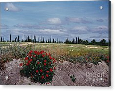 Springtime In Spain Acrylic Print by Barbara Plattenburg