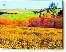 Springtime In The Golden Hills . 7d12402 Acrylic Print by Wingsdomain Art and Photography