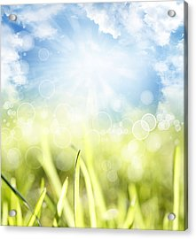 Springtime Acrylic Print by Les Cunliffe