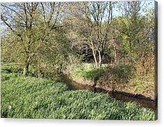 Springtime Meadow Acrylic Print by Paul Hurtubise