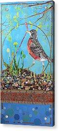 Springtime Acrylic Print by Robin Birrell