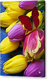 Springtime Tulips And Red Butterfly Acrylic Print by Garry Gay