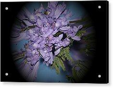 Spyglass Purple Acrylic Print by Elizabeth  Doran