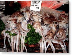 Squid For Sale Acrylic Print by Heather Applegate