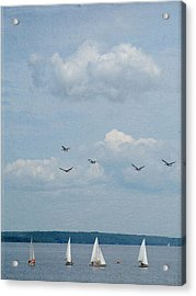 Ssailboats On River Acrylic Print by Francois Dion