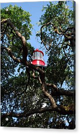 St Augustine Tree House Acrylic Print by Skip Willits