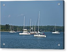 St. Mary's River Acrylic Print by Bill Cannon