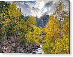 St Vrain Canyon Autumn Colorado View Acrylic Print by James BO  Insogna